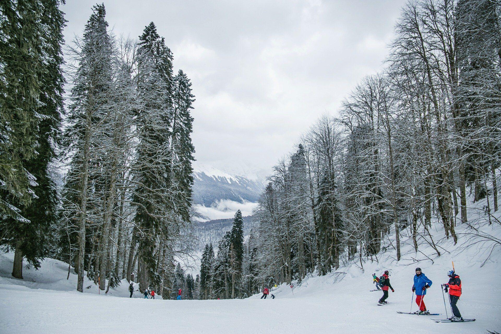 snow-5828736_1920.jpg